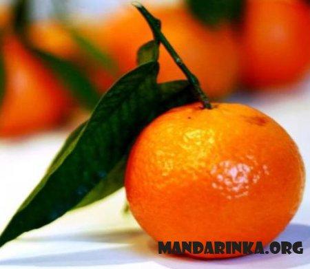 Мандарин спасет от рака